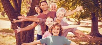 微笑在公园的家庭 免版税库存照片