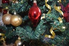 微笑在圣诞树 免版税库存照片