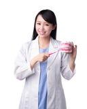 微笑妇女牙医医生 免版税库存照片