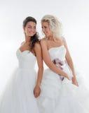 微笑对彼此的美丽的年轻新娘 免版税库存图片