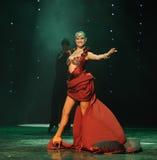 微笑是移动的这奥地利的世界舞蹈 库存照片