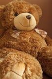 微笑玩具熊 库存图片