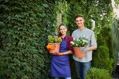 微笑的人和女孩花匠站立与有植物的罐在他们的手上对用绿色常春藤盖的墙壁 库存图片