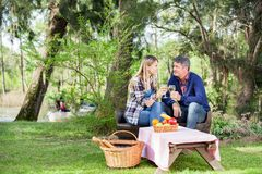 微笑的夫妇饮用酒在露营地 免版税库存照片