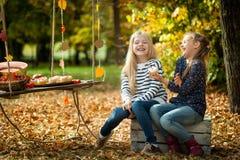 微笑的女孩在秋天公园 免版税库存图片