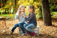 微笑的女孩在秋天公园 库存图片
