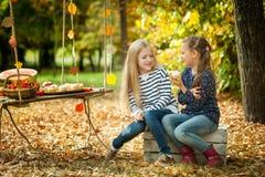 微笑的女孩在秋天公园 免版税库存照片