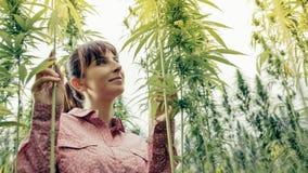 微笑的妇女在大麻庭院里 免版税库存照片