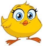 微笑的小鸡 库存图片