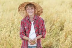 微笑的少年农场助手画象是与在杯形棕榈的燕麦种子在成熟领域 库存照片