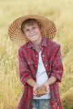 微笑的少年农场助手画象检查在杯形棕榈的燕麦种子在收割期领域 免版税图库摄影