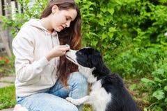 微笑的年轻有吸引力妇女拥抱huging的逗人喜爱的小狗博德牧羊犬在夏天城市公园室外背景中 库存照片