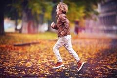微笑的年轻男孩,孩子获得乐趣在秋天在下落的叶子中的城市公园 免版税库存照片
