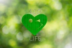 微笑的心形的绿色叶子与文本在被弄脏的bokeh背景的eco生活 图库摄影