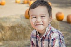 微笑的混合的族种年轻男孩获得乐趣在南瓜补丁 库存照片