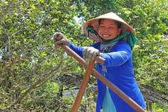 微笑的湄公河三角洲小船夫人 库存照片