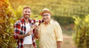 微笑的父亲和儿子品尝在葡萄园里喝酒 免版税图库摄影
