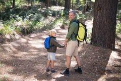 微笑的父亲和儿子运载的背包,当远足在森林里时 库存照片