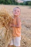 微笑的男孩收集麦子钉收获  愉快的小男孩获得乐趣在金黄领域 库存照片