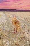 微笑的男孩收集麦子钉收获  愉快的小男孩获得乐趣在金黄领域 免版税库存照片