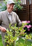 微笑的老人在他自己的庭院里 免版税库存图片