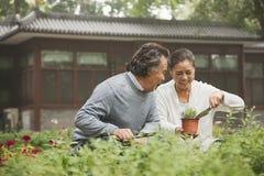 微笑的资深夫妇在庭院里 图库摄影