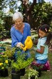 微笑的资深妇女和女孩浇灌的盆的植物 免版税图库摄影