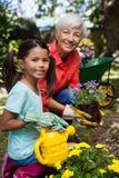 微笑的资深妇女和女孩浇灌的花画象  免版税库存图片