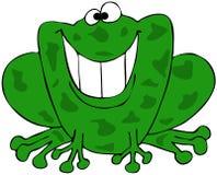 微笑的青蛙 免版税库存图片