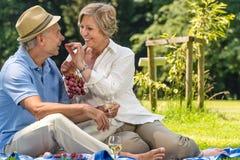 微笑的领抚恤金者夫妇去野餐的夏天 免版税库存照片
