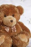 微笑长毛绒玩具熊 库存图片
