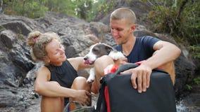 微笑年轻无忧无虑的远足者的tourits和松弛近的瀑布 酸值phangan泰国 HD,慢动作 股票视频