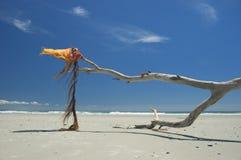 微风海洋 免版税库存图片