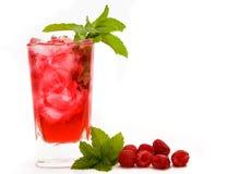 微风莓 免版税库存图片