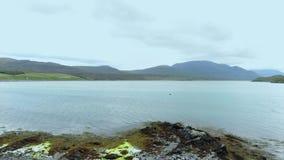 德内斯的凯尔苏格兰-空中寄生虫英尺长度的高地的 影视素材