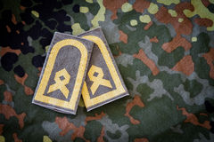 德国上士在德国军用夹克证章 免版税库存图片