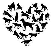 德国人Shepard阿尔萨斯狗心脏概念 向量例证