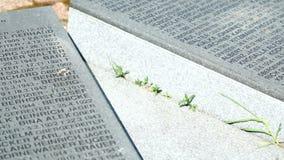 德国军事纪念公墓在俄罗斯 股票视频