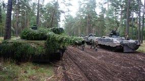 德国坦克在森林里在立陶宛 免版税库存图片