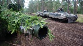 德国坦克在森林里在立陶宛 免版税库存照片