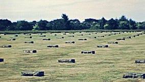 德国战争公墓 影视素材