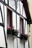 德国房子 库存照片