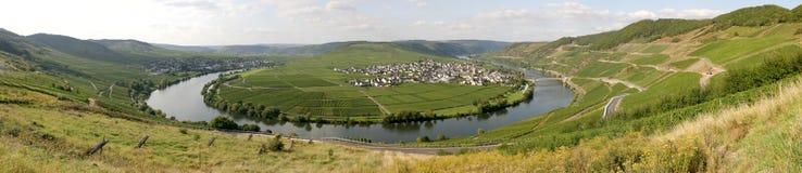 德国摩泽尔全景河 库存图片