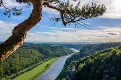 德国横向 撒克逊人的瑞士国家公园在萨克森 免版税库存图片
