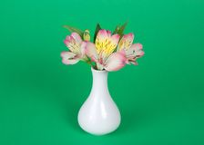 德国锥脚形酒杯花束在花瓶的 免版税库存图片