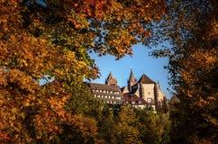 德国Mà ¼ nster德国春天Frà ¼ hling的风景城市施塔特莱茵莱茵河畔布赖萨上午莱茵 库存图片