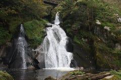 德国schwarzwald triberg瀑布 库存图片