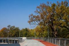 德布勒森,匈牙利- NOBEMBER 1日2015年:在Nagyerdei Stadion附近的连续轨道 它是FC `德布勒森`家庭体育场  打开5月1日, 库存图片
