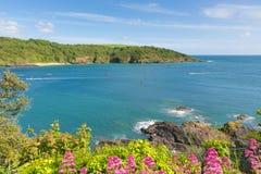 德文郡海岸Salcombe英国英国在与试验违规记录小船的夏天和蓝色海和天空 免版税库存照片