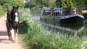 德文郡,英国- 2018年5月8日:旅行在盛大西部运河的Tiverton Canal Company用马拉的驳船 免版税库存照片